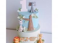 Romeo Jungle Cake